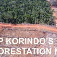 Forest boundaries have been opened and which will be opened for planting oil palm concession area of PT PAPUA AGRO LESTARI